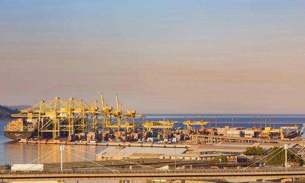 Porto di Trieste, manifestazione dispersa con idranti